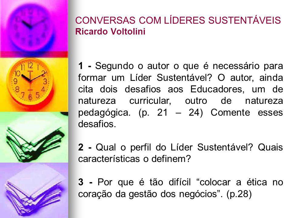 CONVERSAS COM LÍDERES SUSTENTÁVEIS Ricardo Voltolini