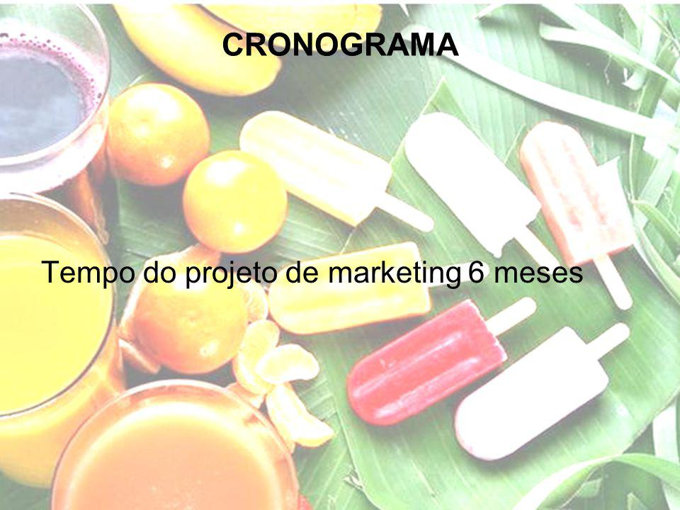CRONOGRAMA Tempo do projeto de marketing 6 meses