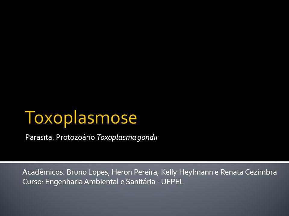 Parasita: Protozoário Toxoplasma gondii