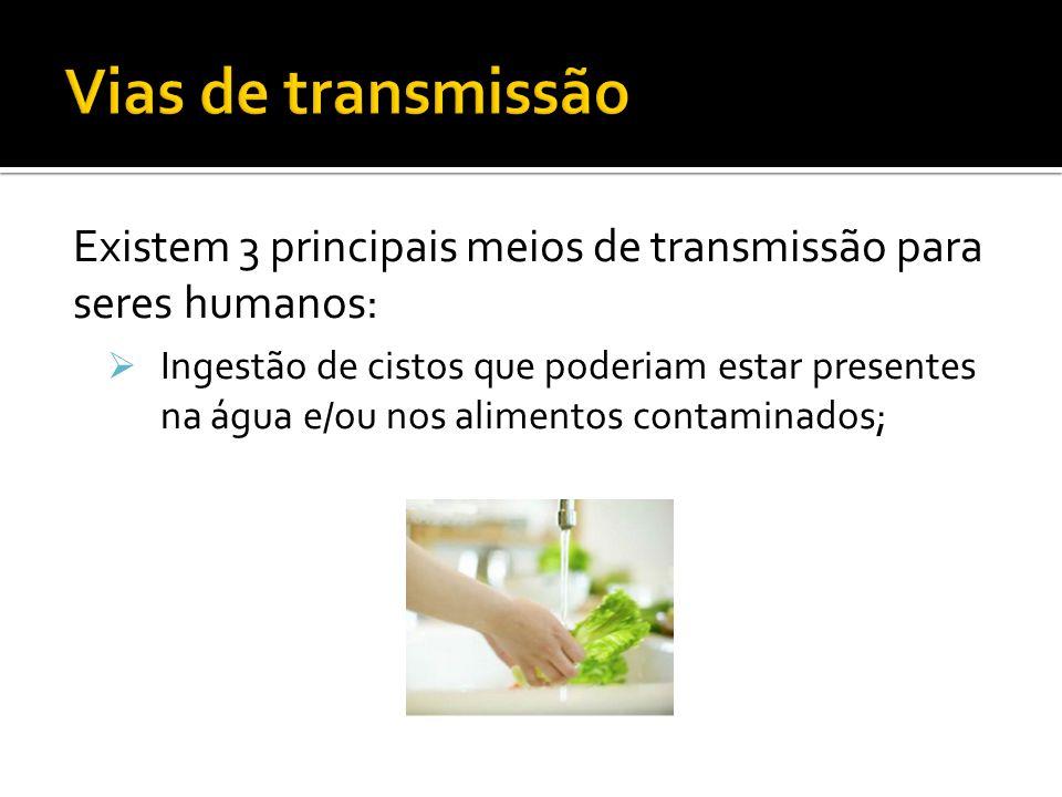 Vias de transmissão Existem 3 principais meios de transmissão para seres humanos: