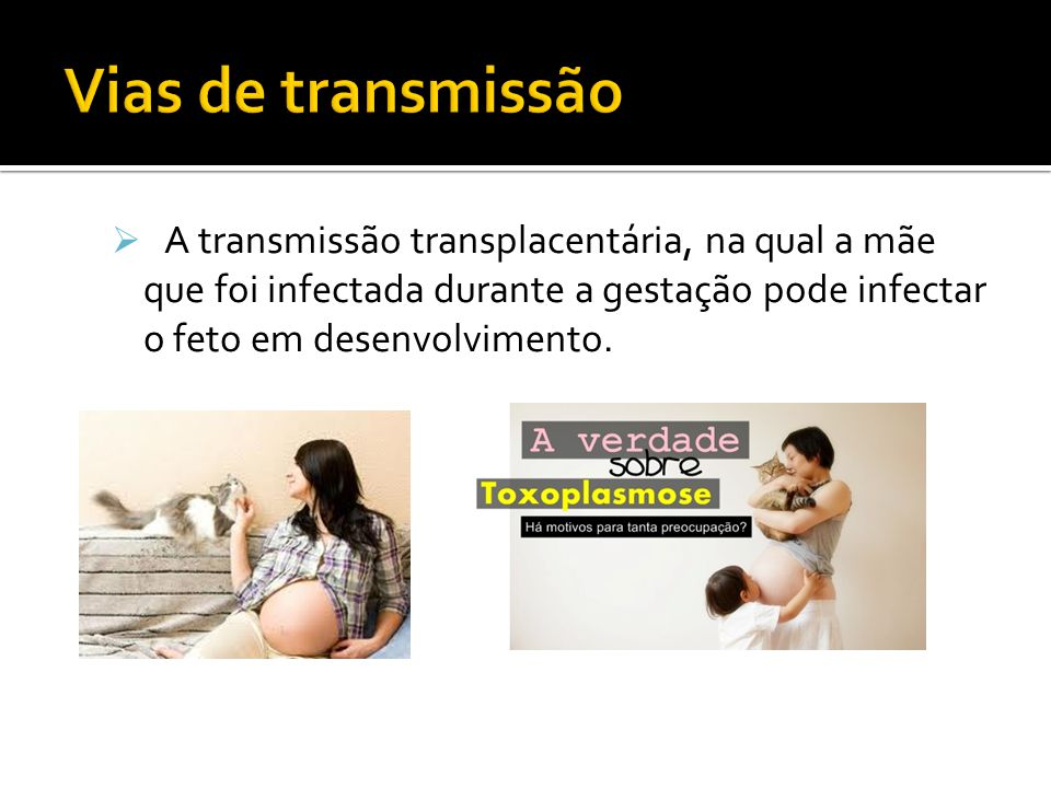Vias de transmissão A transmissão transplacentária, na qual a mãe que foi infectada durante a gestação pode infectar o feto em desenvolvimento.