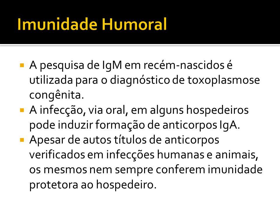 Imunidade Humoral A pesquisa de IgM em recém-nascidos é utilizada para o diagnóstico de toxoplasmose congênita.