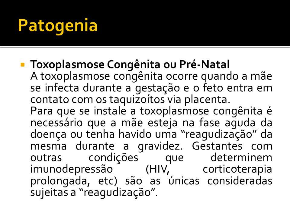 Patogenia Toxoplasmose Congênita ou Pré-Natal