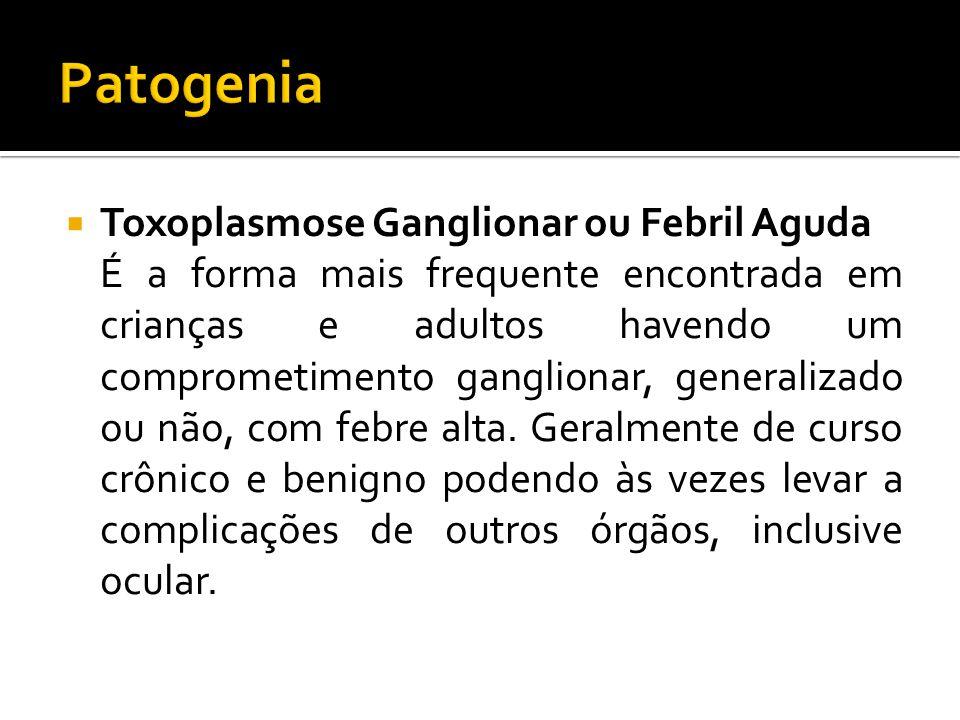 Patogenia Toxoplasmose Ganglionar ou Febril Aguda