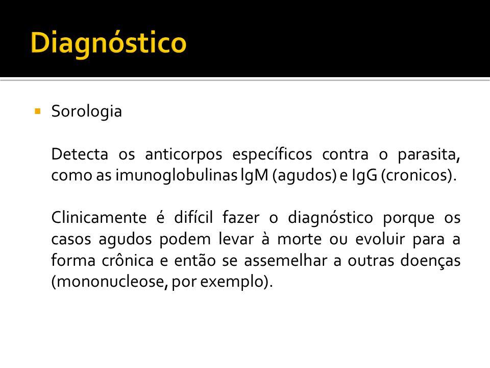 Diagnóstico Sorologia