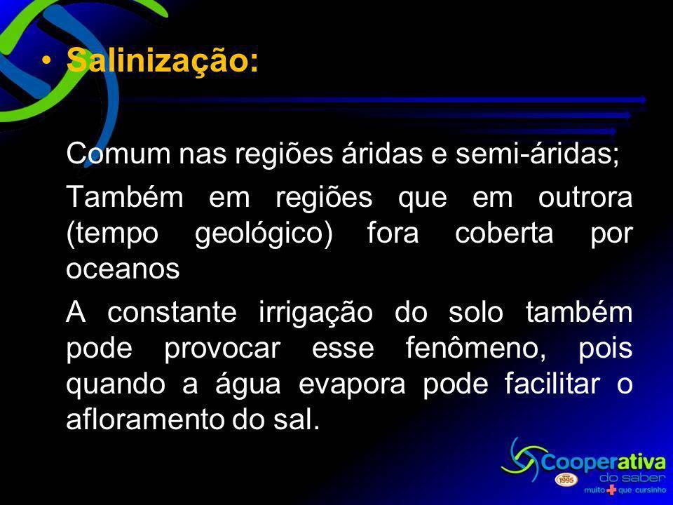 Salinização: Comum nas regiões áridas e semi-áridas;