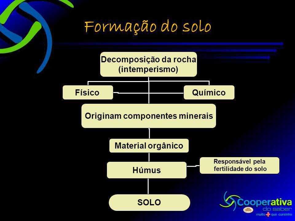 Originam componentes minerais