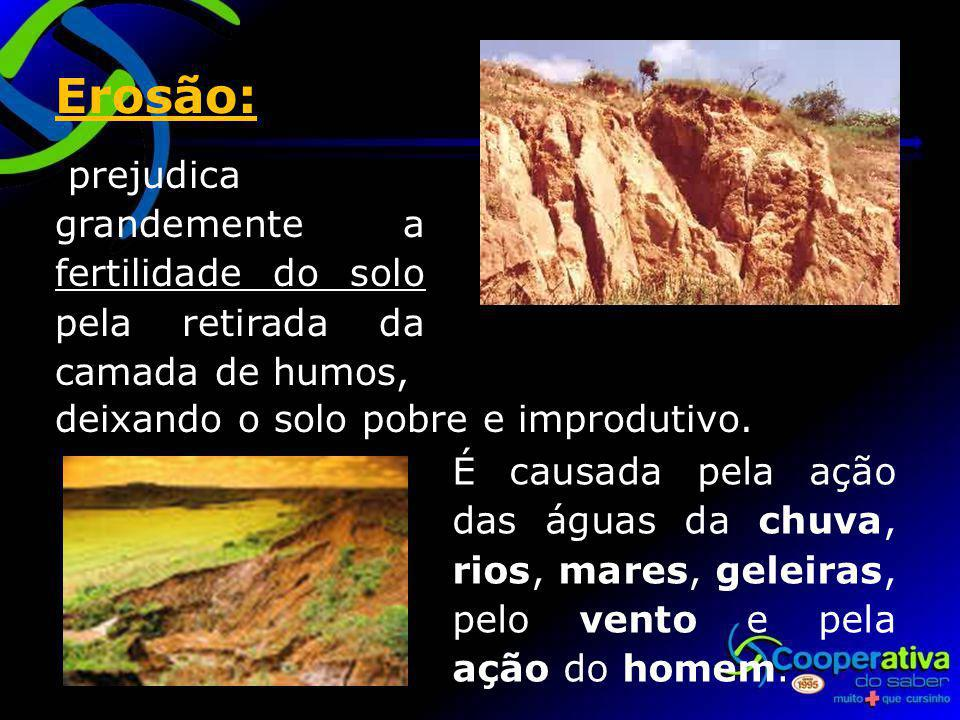 Erosão: prejudica grandemente a fertilidade do solo pela retirada da camada de humos, deixando o solo pobre e improdutivo.