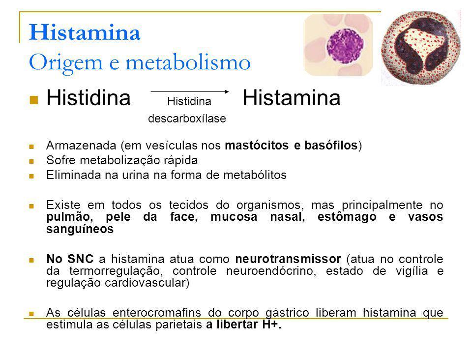 Histamina Origem e metabolismo