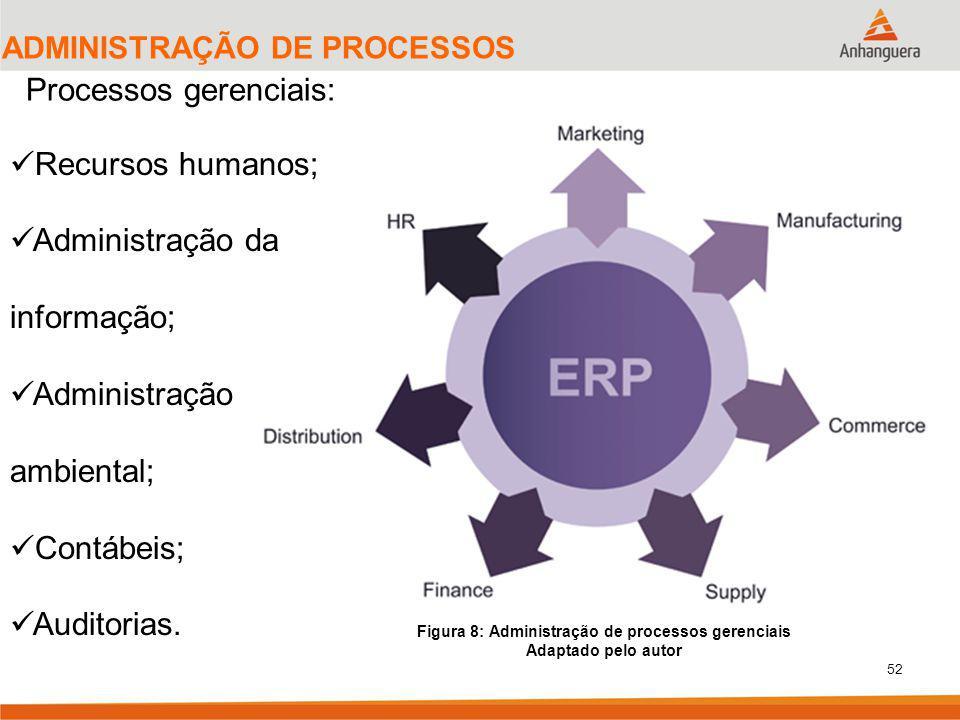 Figura 8: Administração de processos gerenciais