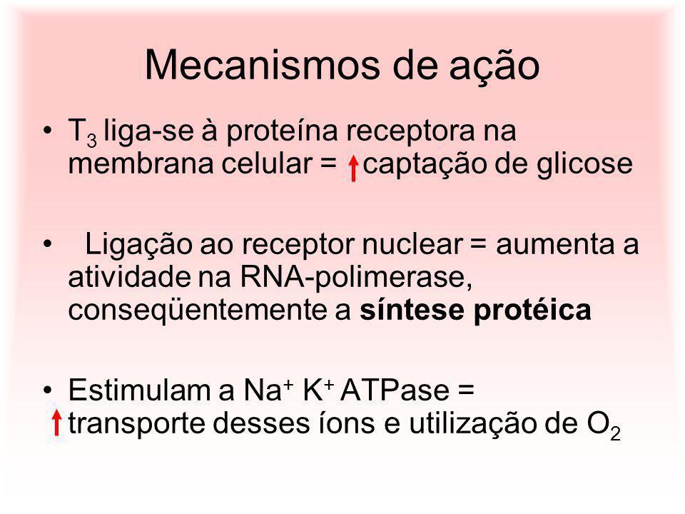 Mecanismos de ação T3 liga-se à proteína receptora na membrana celular = captação de glicose.