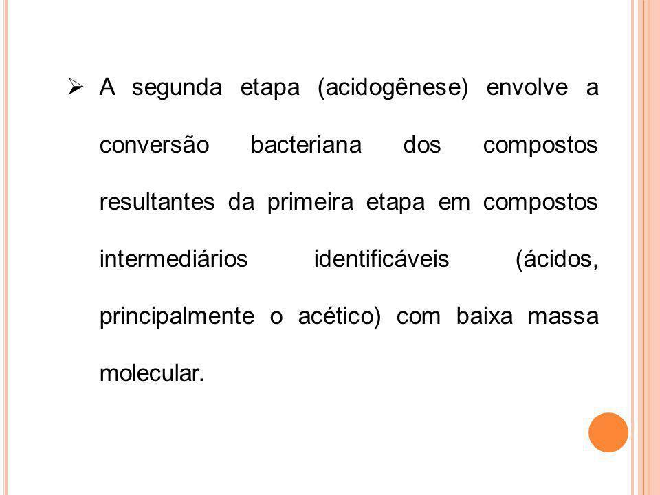 A segunda etapa (acidogênese) envolve a conversão bacteriana dos compostos resultantes da primeira etapa em compostos intermediários identificáveis (ácidos, principalmente o acético) com baixa massa molecular.