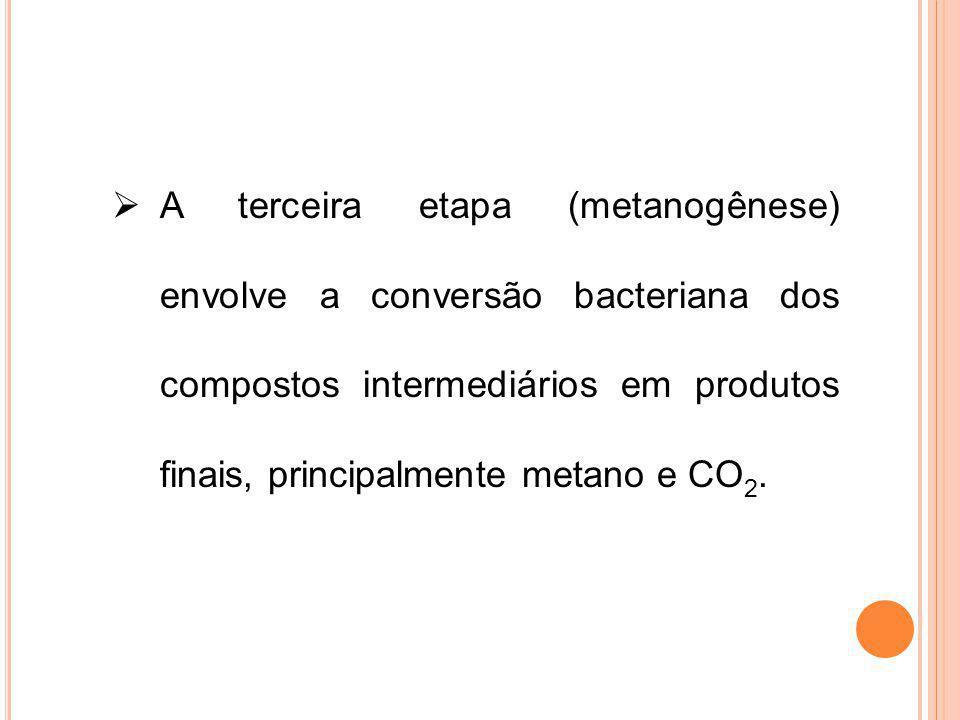 A terceira etapa (metanogênese) envolve a conversão bacteriana dos compostos intermediários em produtos finais, principalmente metano e CO2.