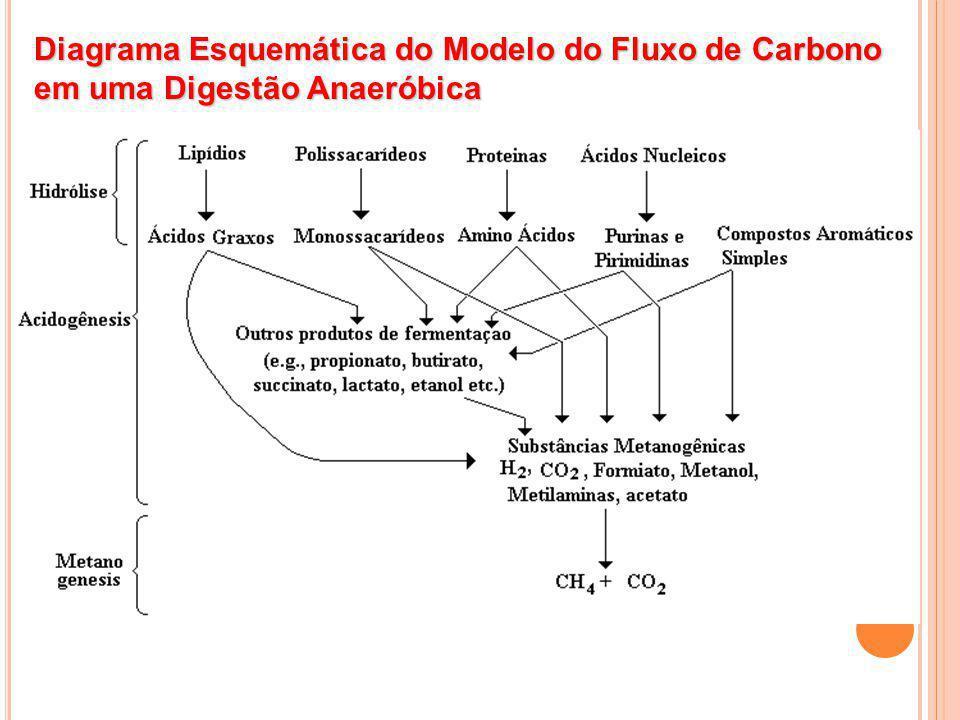 Diagrama Esquemática do Modelo do Fluxo de Carbono em uma Digestão Anaeróbica