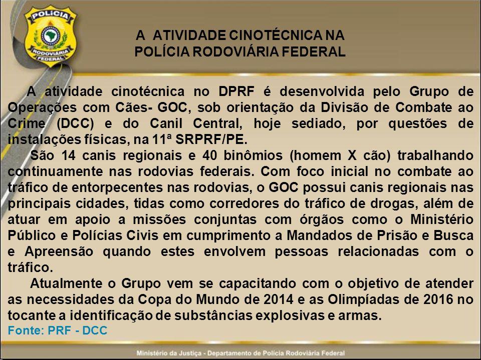 A ATIVIDADE CINOTÉCNICA NA POLÍCIA RODOVIÁRIA FEDERAL