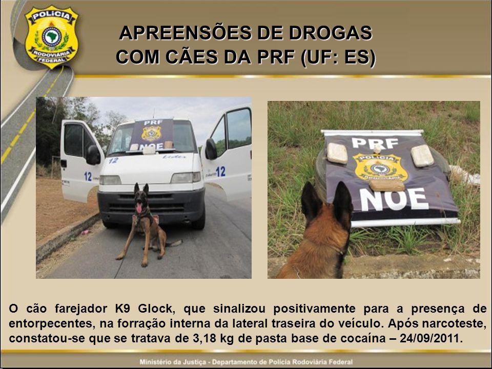 APREENSÕES DE DROGAS COM CÃES DA PRF (UF: ES)