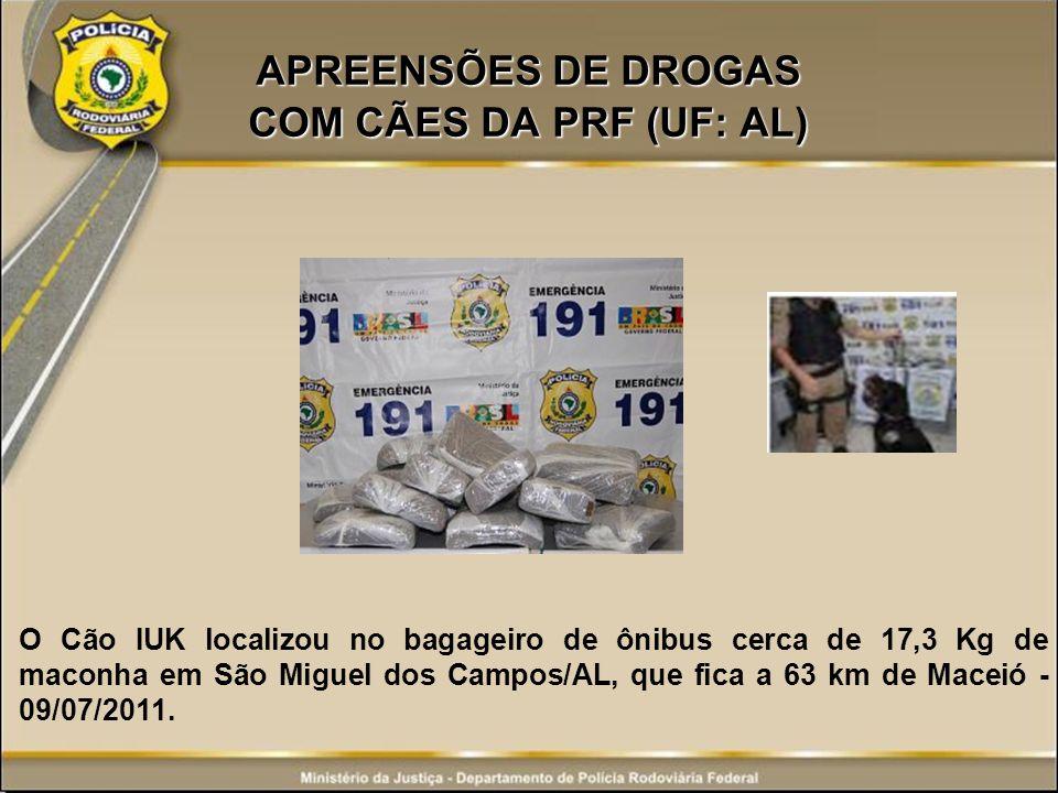 APREENSÕES DE DROGAS COM CÃES DA PRF (UF: AL)