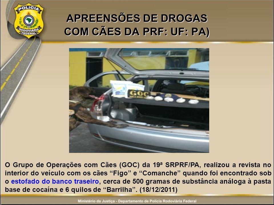 APREENSÕES DE DROGAS COM CÃES DA PRF: UF: PA)