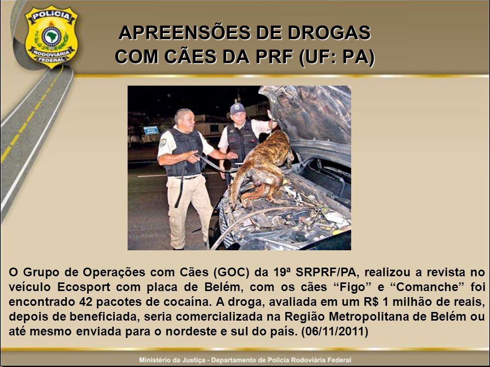 APREENSÕES DE DROGAS COM CÃES DA PRF (UF: PA)