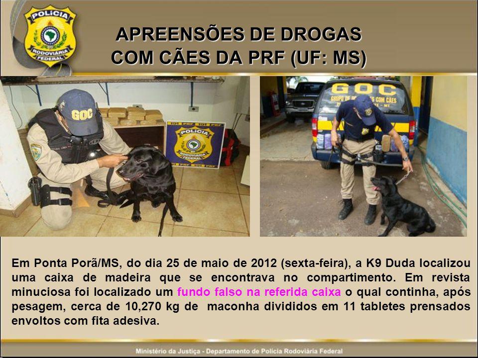 APREENSÕES DE DROGAS COM CÃES DA PRF (UF: MS)