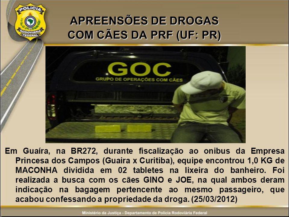 APREENSÕES DE DROGAS COM CÃES DA PRF (UF: PR)