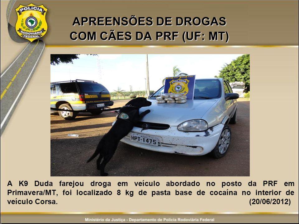 APREENSÕES DE DROGAS COM CÃES DA PRF (UF: MT)