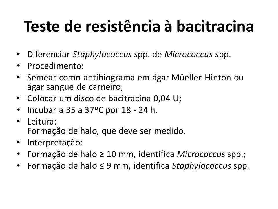 Teste de resistência à bacitracina