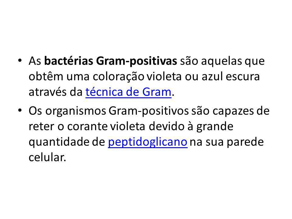 As bactérias Gram-positivas são aquelas que obtêm uma coloração violeta ou azul escura através da técnica de Gram.