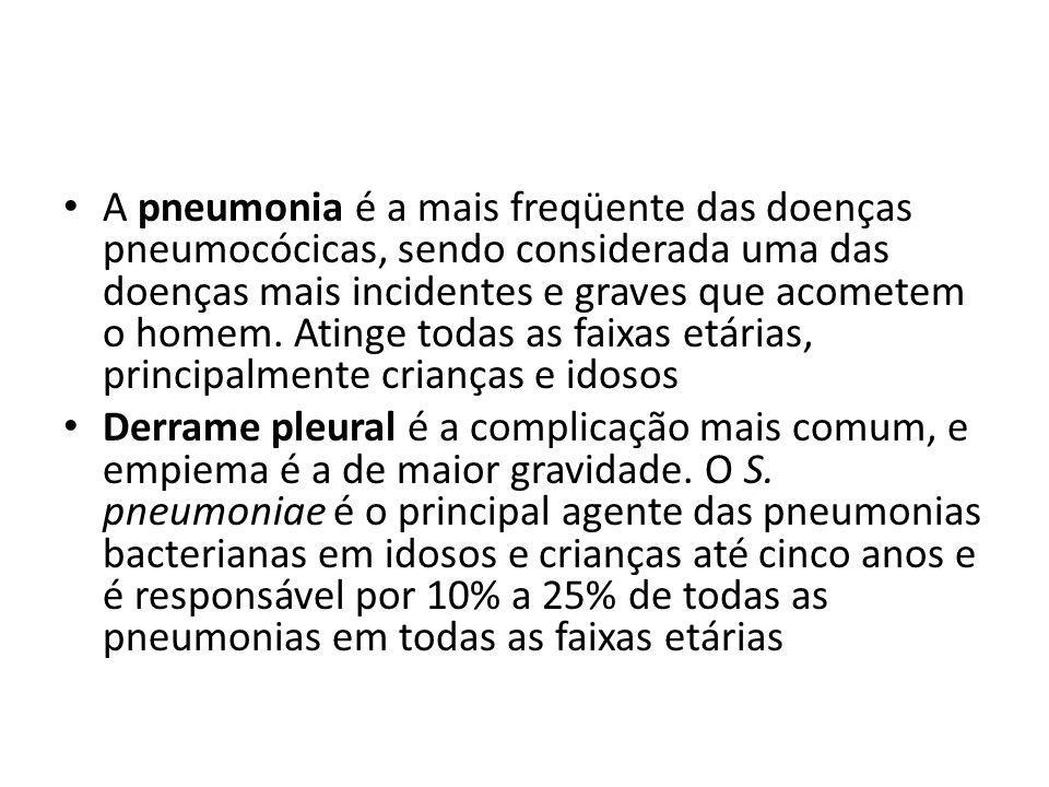 A pneumonia é a mais freqüente das doenças pneumocócicas, sendo considerada uma das doenças mais incidentes e graves que acometem o homem. Atinge todas as faixas etárias, principalmente crianças e idosos