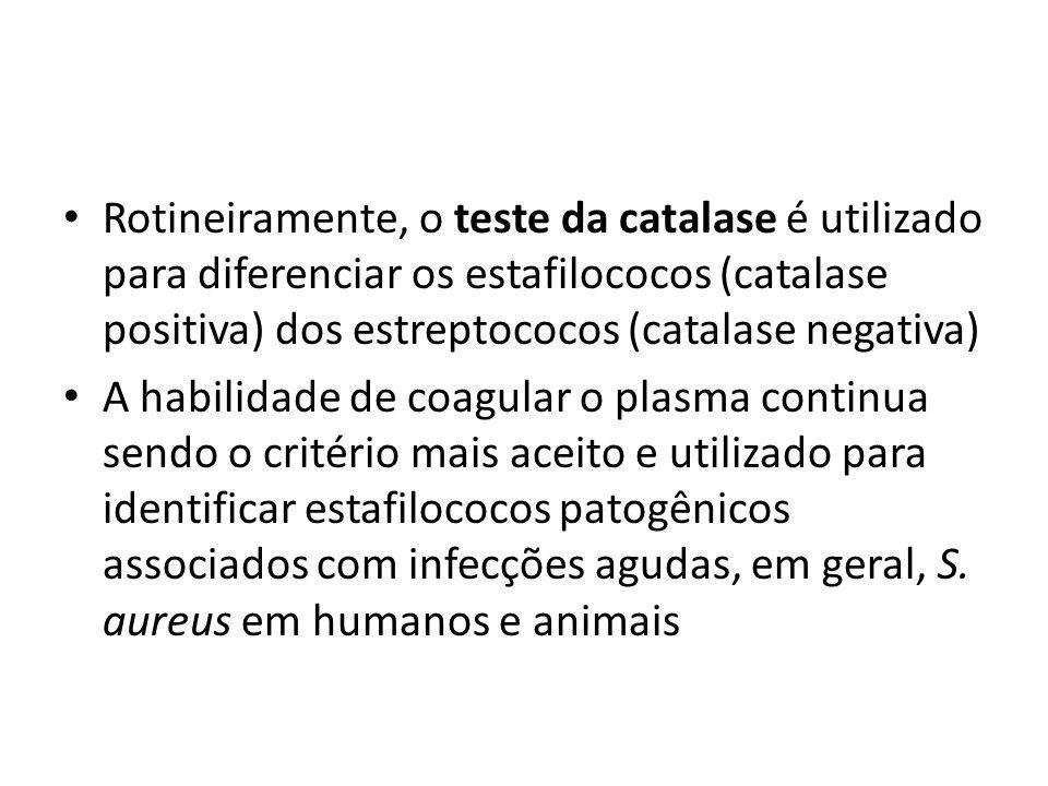 Rotineiramente, o teste da catalase é utilizado para diferenciar os estafilococos (catalase positiva) dos estreptococos (catalase negativa)