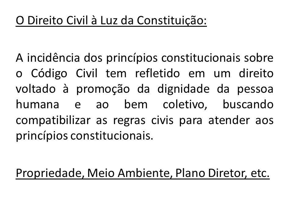 O Direito Civil à Luz da Constituição: