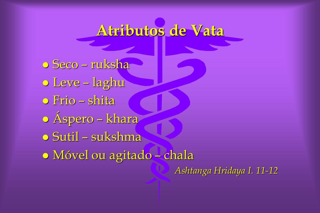 Atributos de Vata Seco – ruksha Leve – laghu Frio – shita