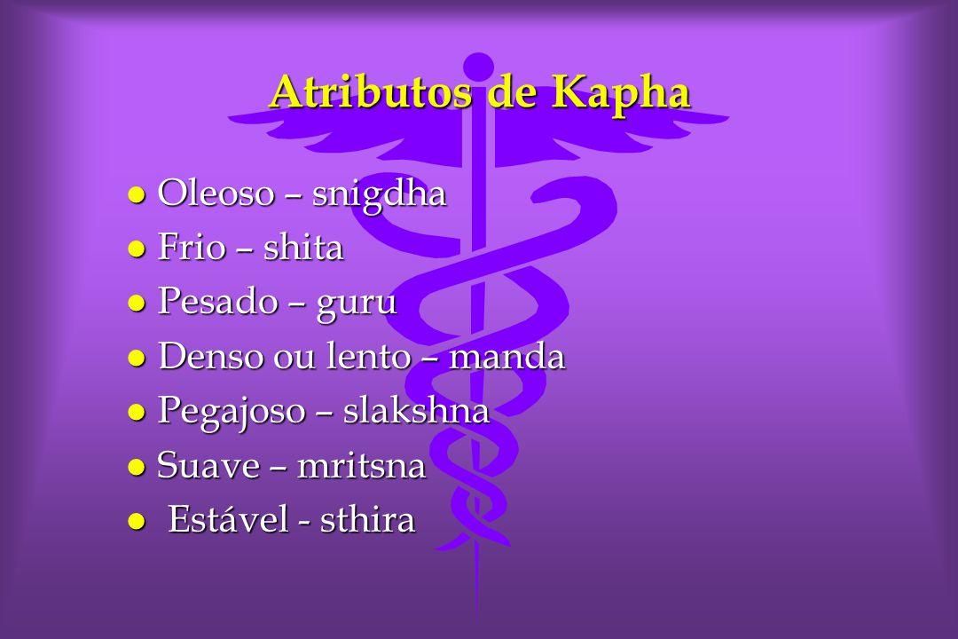 Atributos de Kapha Oleoso – snigdha Frio – shita Pesado – guru