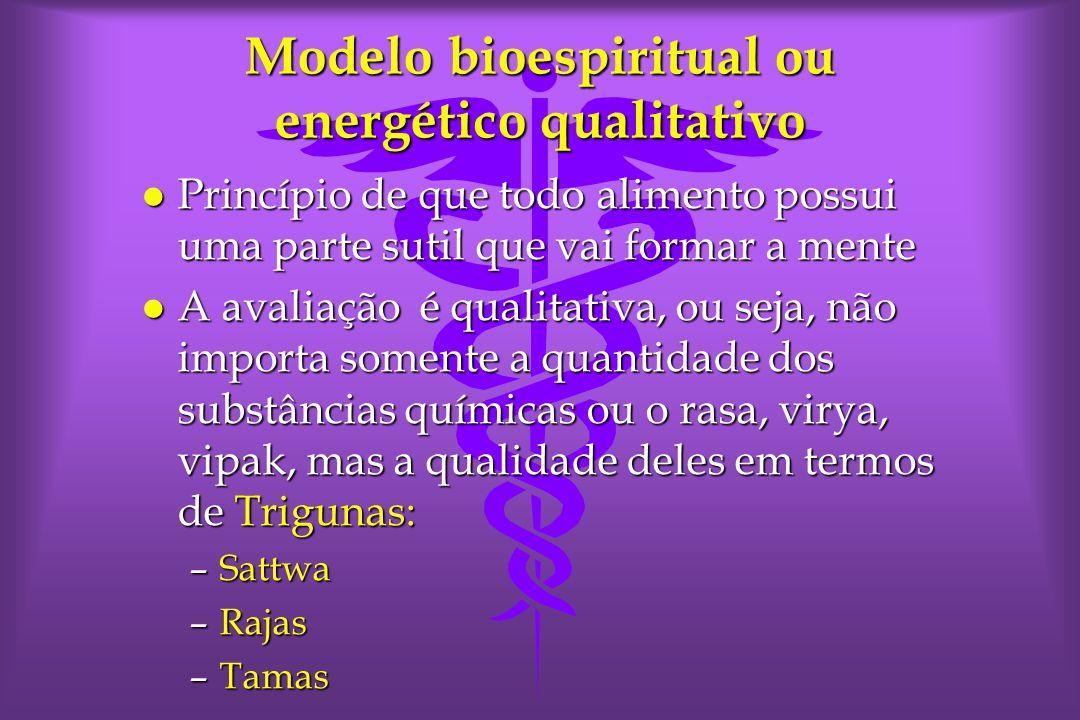 Modelo bioespiritual ou energético qualitativo