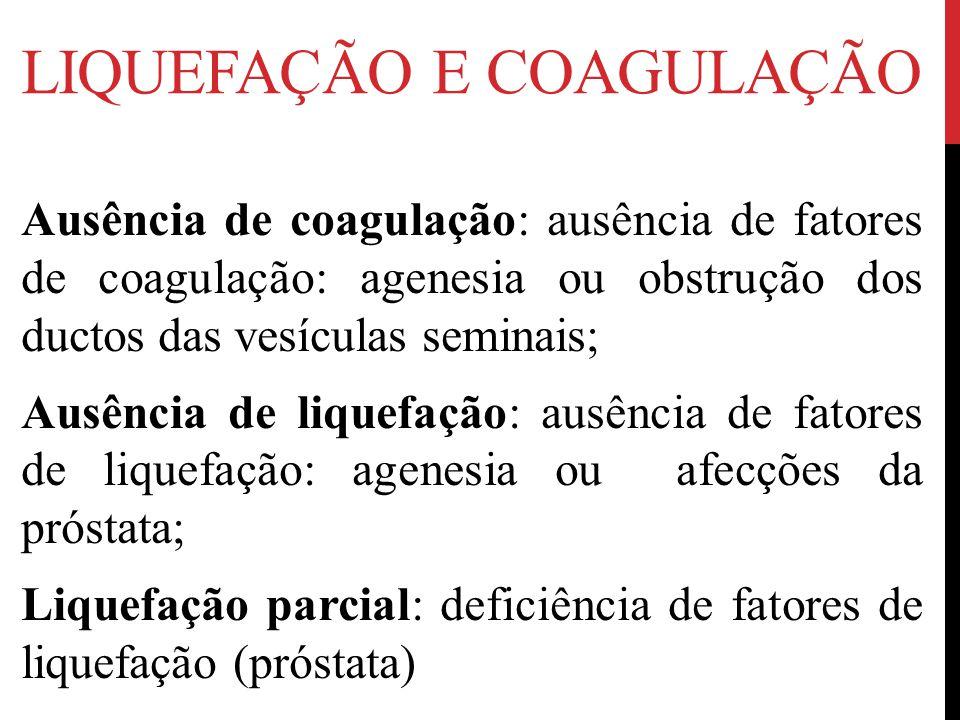 Liquefação e coagulação