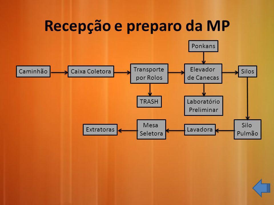 Recepção e preparo da MP