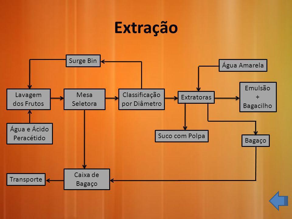 Extração Surge Bin Água Amarela Emulsão + Bagacilho Lavagem dos Frutos