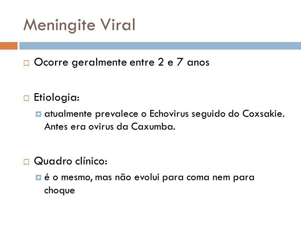 Meningite Viral Ocorre geralmente entre 2 e 7 anos Etiologia: