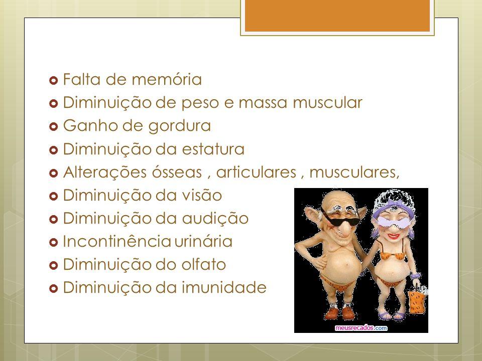 Falta de memória Diminuição de peso e massa muscular. Ganho de gordura. Diminuição da estatura. Alterações ósseas , articulares , musculares,