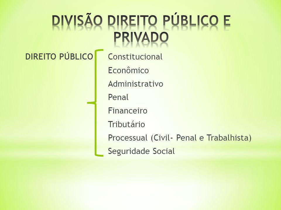 DIVISÃO DIREITO PÚBLICO E PRIVADO