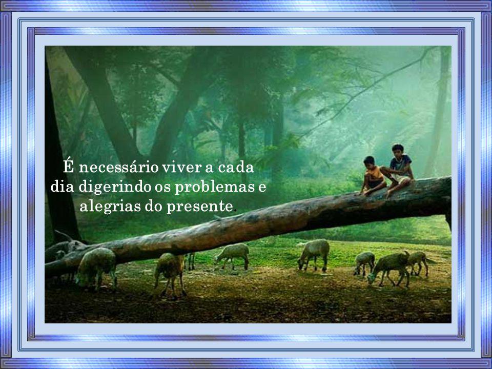 É necessário viver a cada dia digerindo os problemas e alegrias do presente.