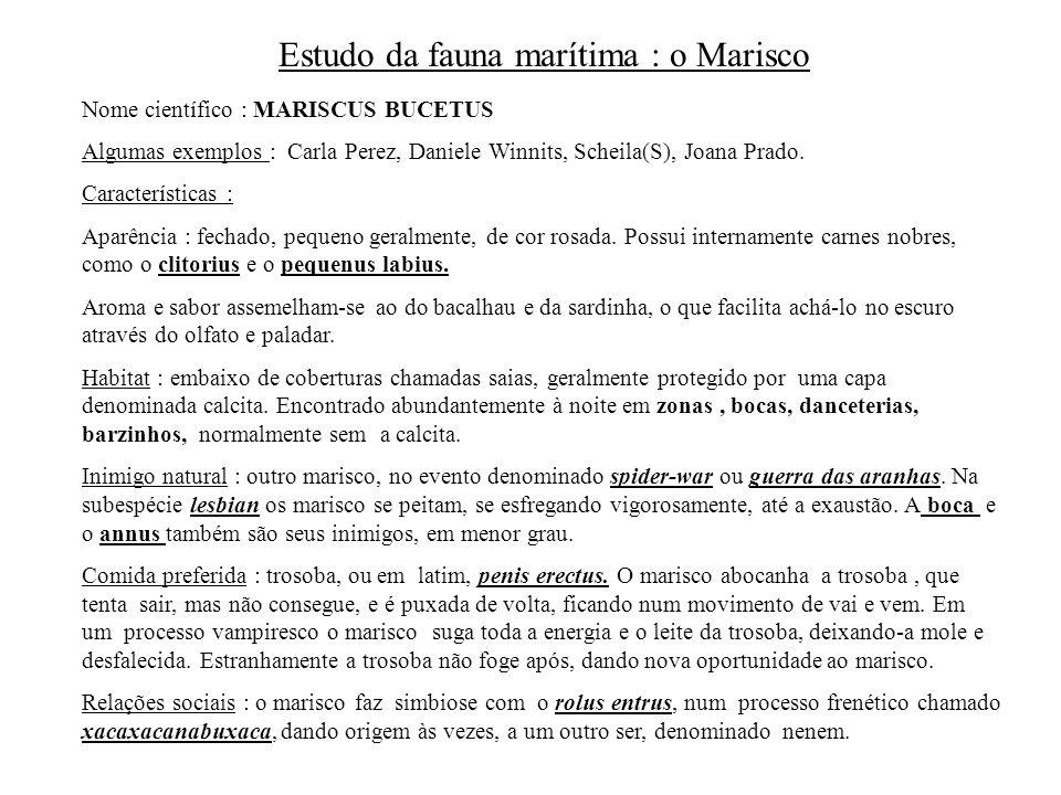 Estudo da fauna marítima : o Marisco