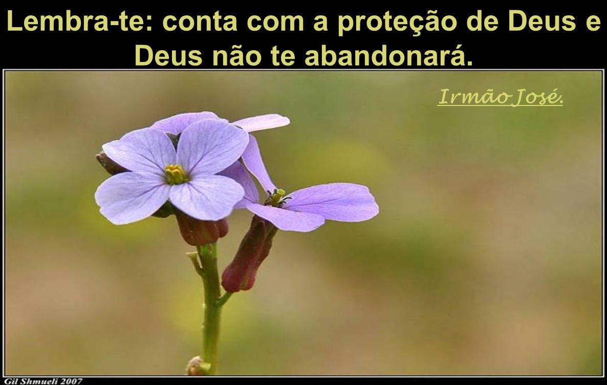 Lembra-te: conta com a proteção de Deus e Deus não te abandonará.