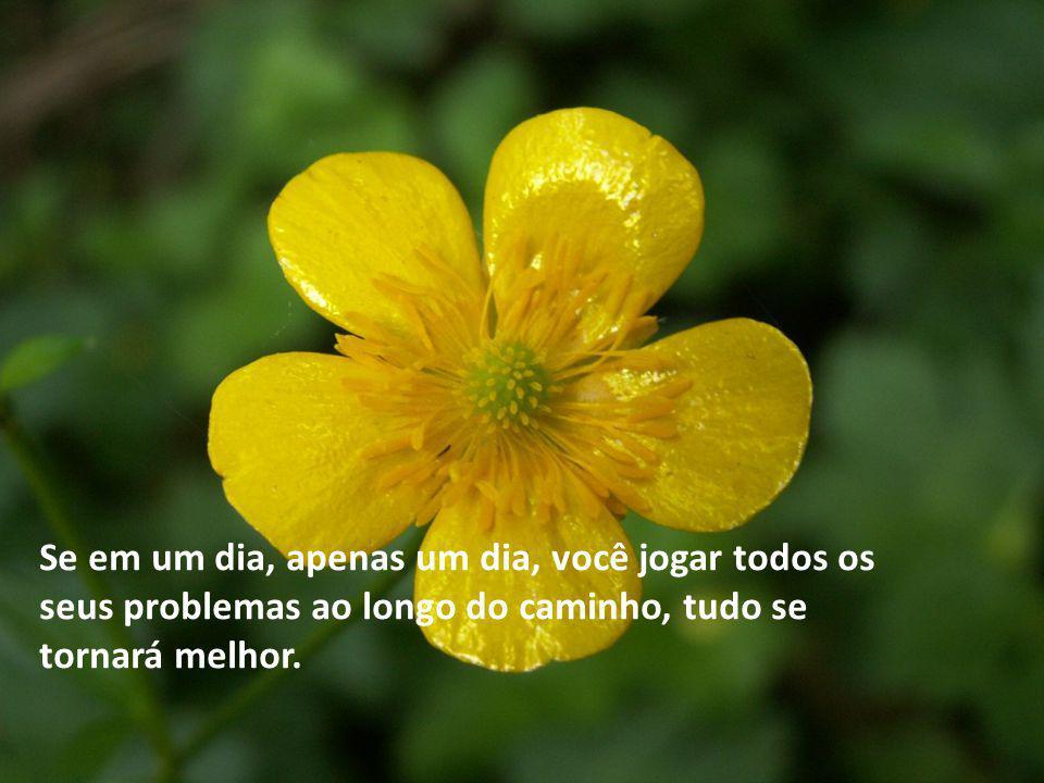 Se em um dia, apenas um dia, você jogar todos os seus problemas ao longo do caminho, tudo se tornará melhor.