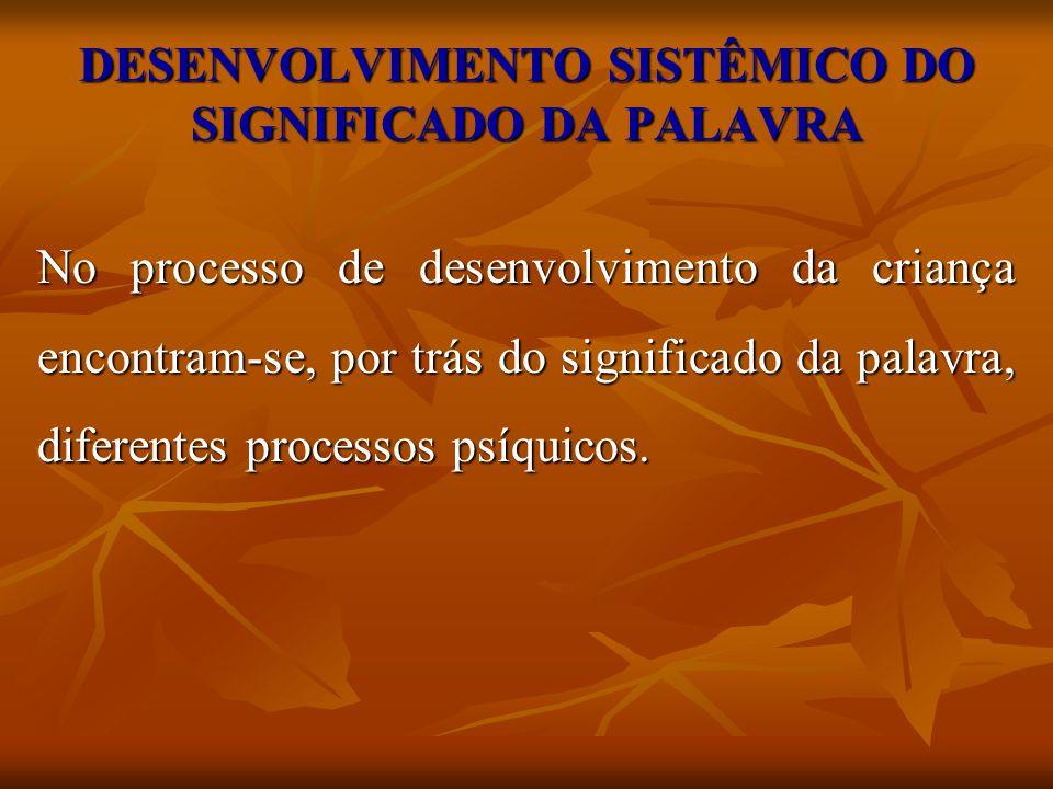 DESENVOLVIMENTO SISTÊMICO DO SIGNIFICADO DA PALAVRA
