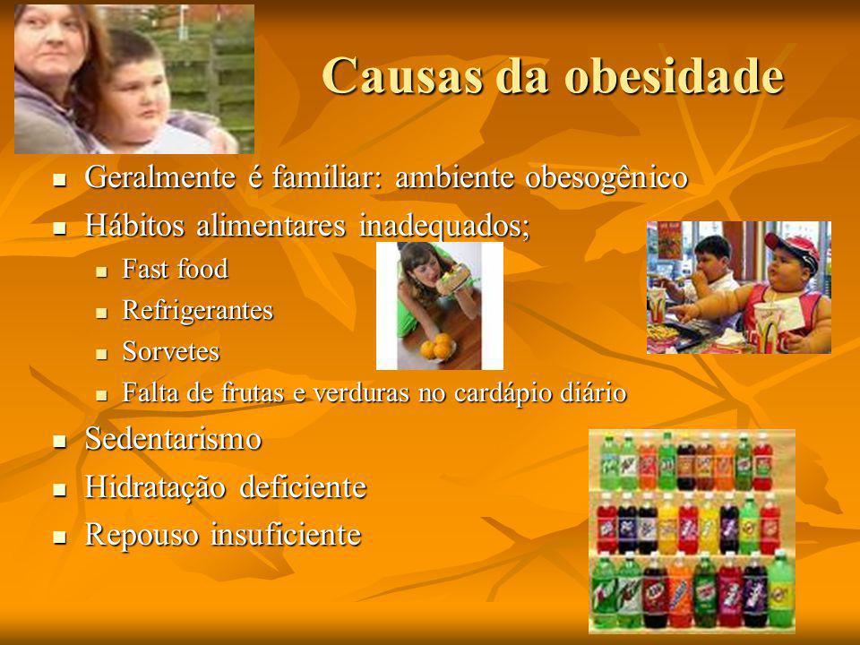 Causas da obesidade Geralmente é familiar: ambiente obesogênico