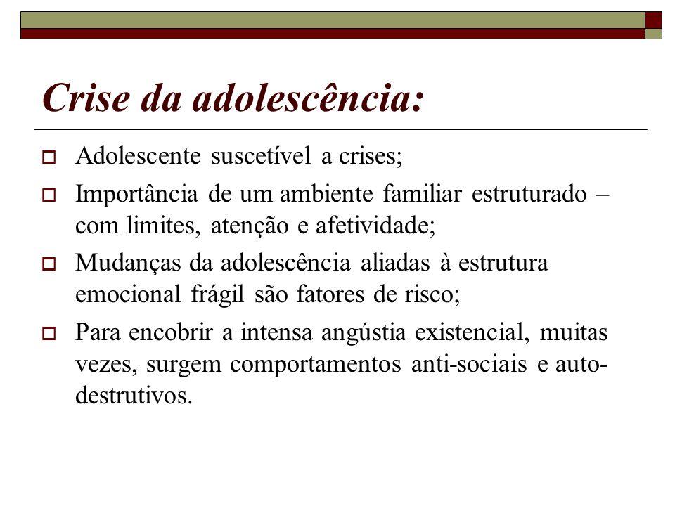 Crise da adolescência: