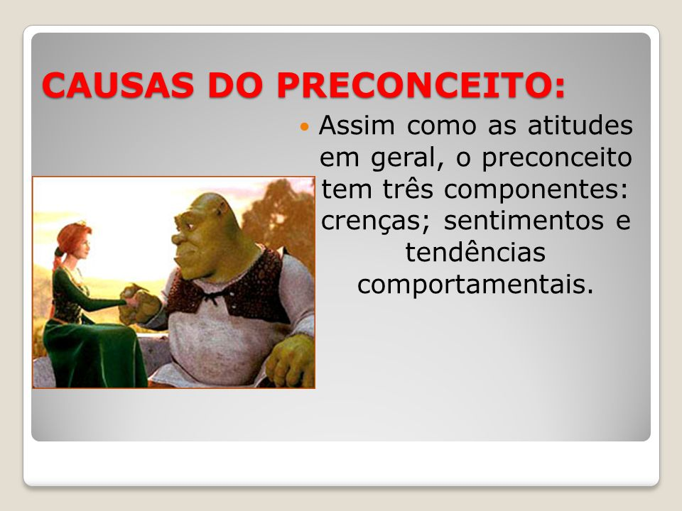 CAUSAS DO PRECONCEITO: