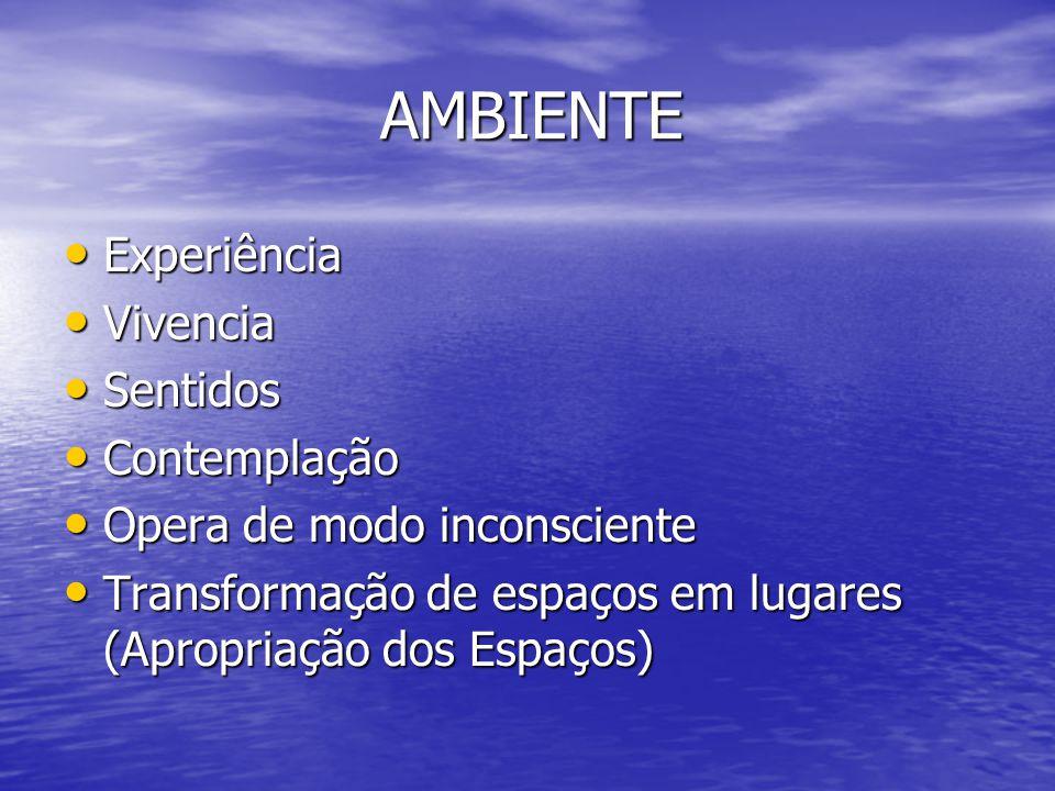 AMBIENTE Experiência Vivencia Sentidos Contemplação