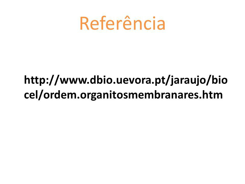Referência http://www.dbio.uevora.pt/jaraujo/biocel/ordem.organitosmembranares.htm